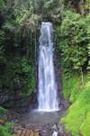 S�o Nicolau waterfall / cascata S�o Nicolau, M�-Z�chi district, S�o Tom� and Pr�ncipe / STP: waterfall surrounded by lush vegetation / cascata rodeada de vegeta��o luxuriante - photo by M.Torres