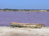 Senegal - Lake Retba or Lake Rose: shallow lake with a high salt content appears pink in color - finishing point of the Dakar Rally  - photo by G.Frysinger