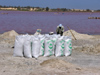 Senegal - Lake Retba or Lake Rose: salt bags - photo by G.Frysinger