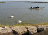 Senegal - Djoudj National Bird Sanctuary: pelicans and boat - photo by G.Frysinger