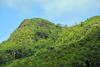Mahe, Seychelles: Anse � la Mouche - hills covered in dense forest - photo by M.Torres