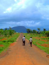 Freetown Peninsula, Sierra Leone: children returning from school along an empty road - photo by T.Trenchard