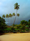 Lakka Beach, Freetown Peninsula, Sierra Leone: storm clouds behind palm trees - photo by T.Trenchard