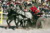Slovenia - Lipica / Lipizza - Goriska region: Lipica stud farm - Combined driving event - Carriage Driving - negotiating the sand - photo by I.Middleton