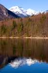 Slovenia - reflection of mountains and forest - Bohinj Lake in Spring - photo by I.Middleton