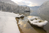 Slovenia - Ribcev Laz - forzen boat and forest - view across Bohinj Lake in winter - photo by I.Middleton
