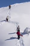Slovenia - Snowboarders climbing on Vogel mountain in Bohinj - photo by I.Middleton