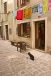 Slovenia - Piran: Narrow street - clothes line and dog - photo by I.Middleton