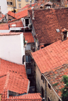 Slovenia - Piran - Slovenska Istra: red tiles - roofs of the old town - photo by M.Torres