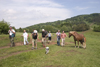 Slovenia - Cerknica municipality: tourists and horses on Slivnica Mountain - photo by I.Middleton