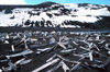 South Shetland islands - Deception island: barrel fragments strewn across volcanic sand - photo by R.Eime
