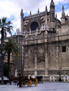 Spain / España - Sevilla: plaza by the Cathedral - photo by R.Wallace