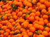 Spain / España -  Tangerines - Citrus reticulata - hesperidio fruto del mandarino - Mercado central de Valencia  (photo by M.Bergsma)