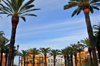 Ayamonte, Huelva, Andalucia, Spain: main square with palm trees - Plaza de la Laguna designed by Prudencio Navarro Pallares - photo by M.Torres
