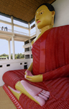 Matara, Southern province, Sri Lanka: sitting giant Buddha at Matara Temple - photo by B.Cain