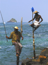 Weligama, Southern Province, Sri Lanka: two of the famous stilt fishermen - photo by B.Cain