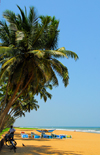 Wadduwa, Western province, Sri Lanka: tropical beach - coconut trees and the Indian ocean - Blue Water Hotel - photo by M.Torres