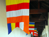 Kandy, Central province, Sri Lanka: Buddhist flags - blue-yellow-red-white-orange stripes - Sri Dalada Maligawa - Temple of the Sacred Tooth Relic - photo by M.Torres