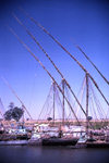 Sudan - White Nile River - Jonglei / Junqali state: feluccas - sailing ships tied up along the banks - photo by Craig Hayslip