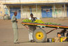 Sudan - El Kamlin Gezira / Al Jazirah state: selling mangoes from a cart - photo by L.Gewalli