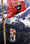 Switzerland - Uri Canton - hight of the St. Gotthard-Pass: shows the flags of all swiss cantons - on the image the flag of the Canton of Glarus with Holy Fridolin on it (photo by W.Schmidt)