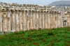 Syria - Afamia / Apamea: columns (photo by J.Wreford)