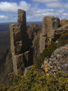 Tasmania - Cradle Mountain - Lake St Clair National Park: Overland Track - on a ridge (photo by M.Samper)