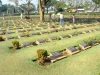 Thailand - Kanjanaburi: graves - war cemetery (photo by Llonaid)
