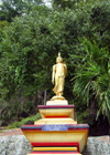 Thailand - Krabi: golden Budhha (photo by Ben Jackson)