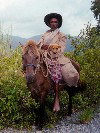 Manatuto district: East Timor cowboy with his horse and his dog