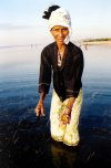East Timor - woman gathering sea urchins in the Wetar Strait (photo by M.Sturges)