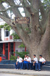 Tonga - Tongatapu - Nuku'alofa: young men in uniform - Raintree square - photo by D.Smith