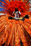 Port of Spain, Trinidad and Tobago: man with red costume during the carnival parade - photo by E.Petitalot
