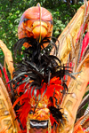 Port of Spain, Trinidad and Tobago: plumed head - carnival parade - photo by E.Petitalot