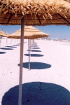 Tunisia - Jerba Island - Ras Taguermes: beach near Hotel Dar Jerba (photo by M.Torres)