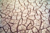 Tunisia / Tunisia / Tunisien - Chott Fejej: cracked ground - dry lake (photo by M.Torres)