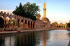 Urfa / Edessa / Urhai / Riha / Sanliurfa, Southeastern Anatolia, Kurdistan, Turkey: Pool of Sacred Fish - where Abraham was thrown into the fire by Nimrod - Balikligöl - Halil-ur-Rahman mosque - photo by C. le Mire