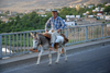 "Hasankeyf / Heskif, Batman Province, Southeastern Anatolia, Turkey: an old Kurdish man crosses the bridge on his donkey - Atatürk coined the term ""Mountain Turks"" as an euphemism for the Kurdish people - photo by W.Allgöwer"