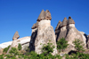 Cappadocia - G�reme, Nevsehir province, Central Anatolia, Turkey: basalt over tuff - fairy chimneys and a bit of forest - Valley of the Monks - Pasabagi Valley- photo by W.Allg�wer