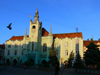 Mukachevo, Transcarpathia / Zakarpattya, Ukraine: town hall - photo by J.Kaman