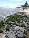Uruguay - Colonia del Sacramento - rocky beach - photo by M.Bergsma