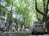 Uruguay - Colonia del Sacramento - Small car, green trees - photo by M.Bergsma