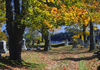 Maine, USA: old cemetery trees with Fall colors - New England Atlantic Coast - photo by C.Lovell