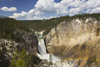 Yellowstone National Park, Wyoming, USA: Lower Yellowstone Falls drops into the Grand Canyon of the Yellowstone - largest volume waterfall in the US Rocky Mountains - photo by C.Lovell