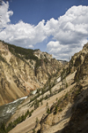 Yellowstone National Park, Wyoming, USA: the Grand Canyon of the Yellowstone below the falls - the river was named for the yellow rocks on the canyon's banks - photo by C.Lovell