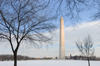Washington, D.C., USA: bare trees of the National Mall frame the 555 foot Washington Monument honoring President George Washington - photo by C.Lovell