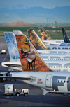 Denver, Colorado, USA: Denver International Airport - row of Frontier aircraft with their unique tail art - Airbus A320-214 N201FR Caribou 'Yukon' cn3389 - photo by M.Torres