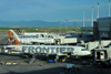 Denver, Colorado, USA: Denver International Airport - Frontier Airlines aircraft at Concourse A with the Rocky Mountains in the background - Airbus A320-214 N201FR Caribou 'Yukon' cn3389 - photo by M.Torres