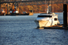 Portland, Oregon, USA: yacht on the Willamette River - Riverplace Marina - Marquam Bridge - photo by M.Torres