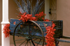 Santa F�, New Mexico, USA: red chili peppers decorate an old cart - photo by C.Lovell